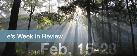 e's Weeks in Review: Feb 15-28